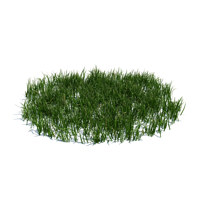 108_simple_grass_large_v3