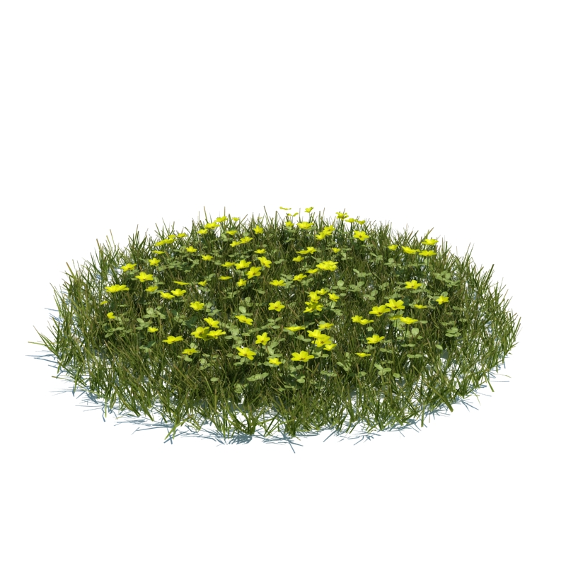 120_simple_grass_large_v3